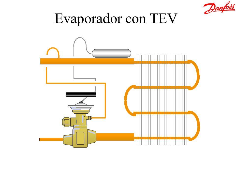 &[Archivo] Evaporador con TEV